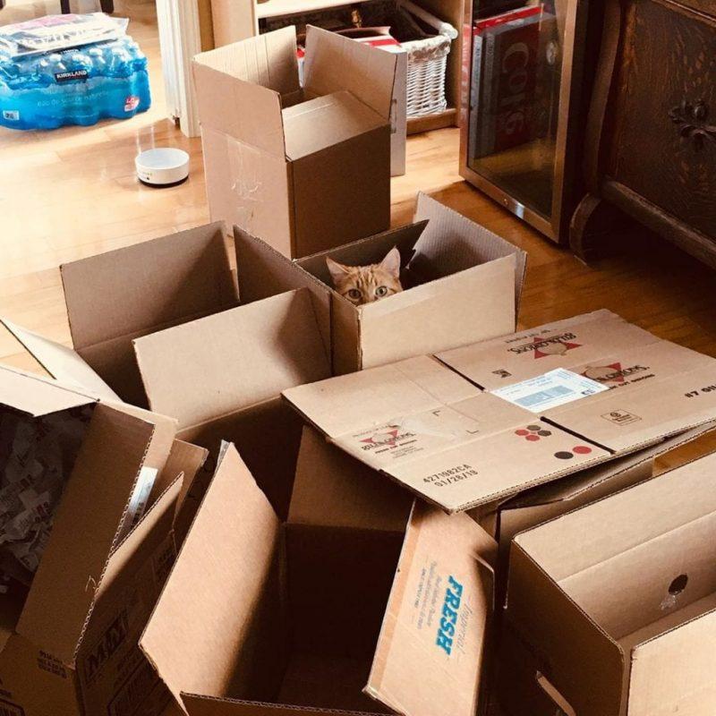 bán thùng carton chuyển nhà Quận Tân Bình